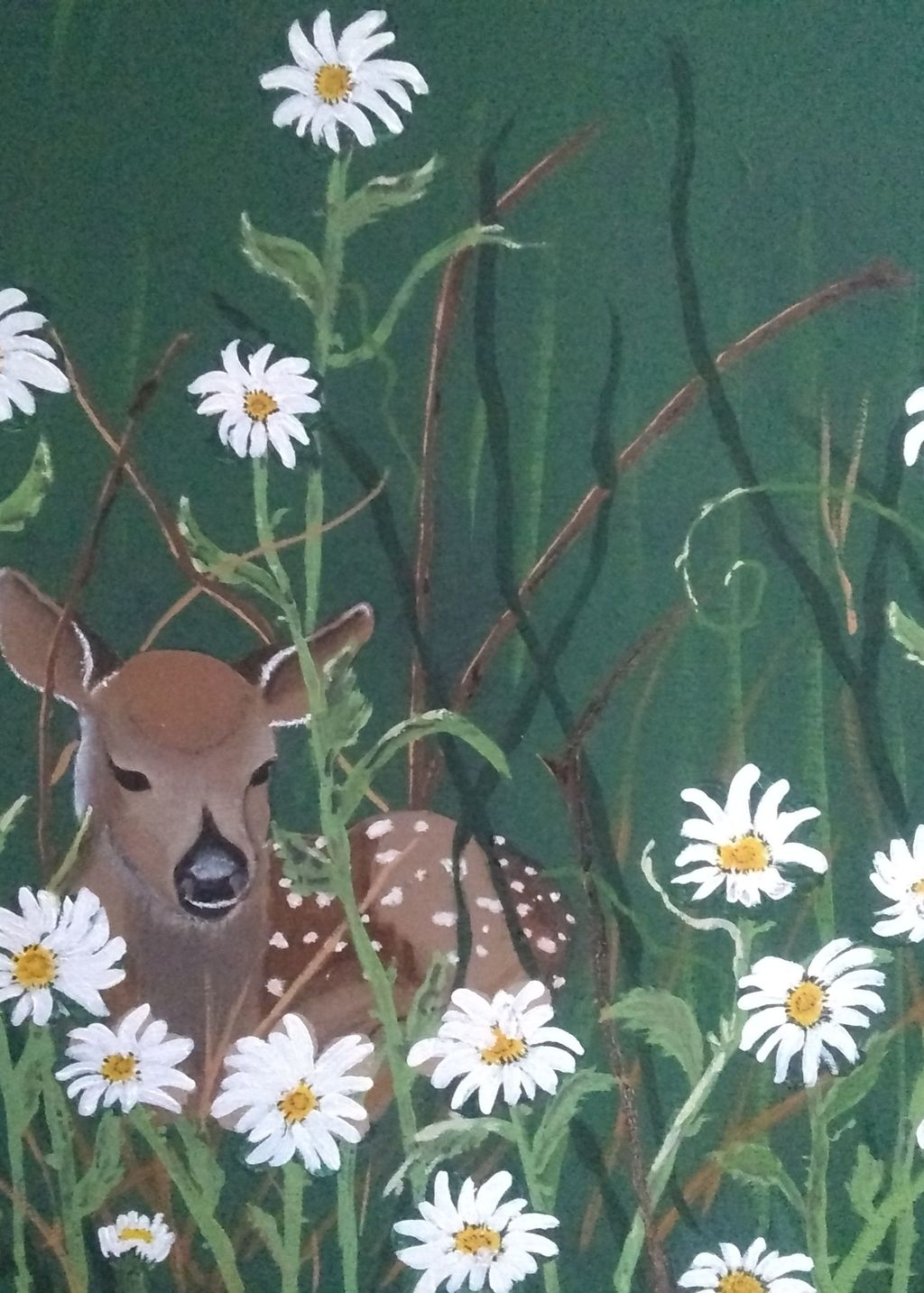 Picture of Fawn in the daisies