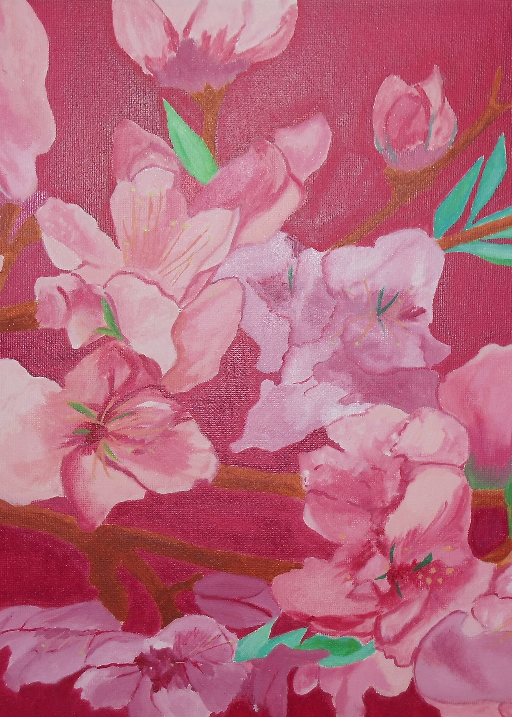 Picture of Peach Blossoms
