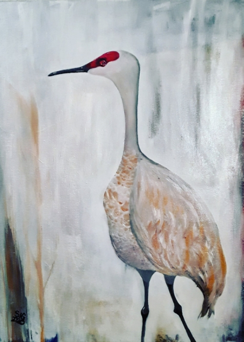 Picture of Sandhill Crane