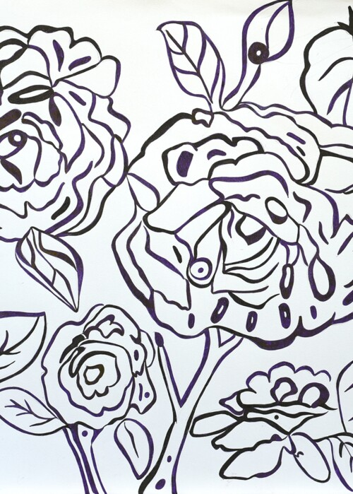Picture of Roses on White