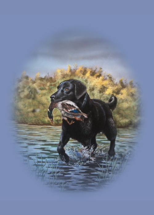 Picture of Bird dog