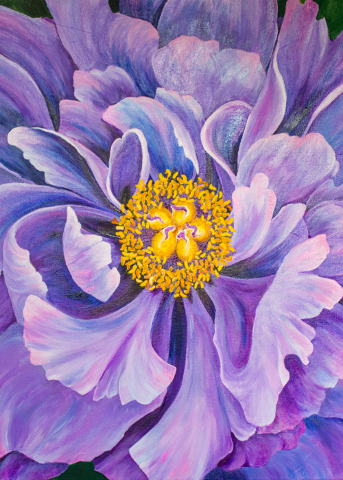 Picture of Lavendar Peony