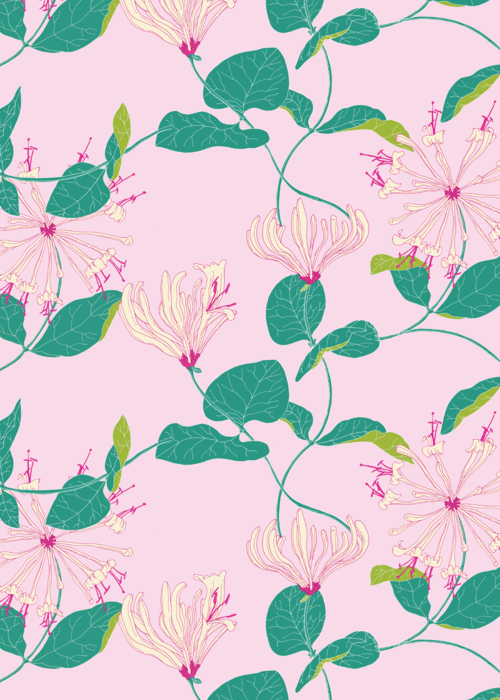 Picture of Honeysuckle Pattern Pink