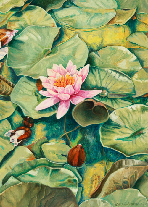 Picture of Pink Lilies in Yellow Water