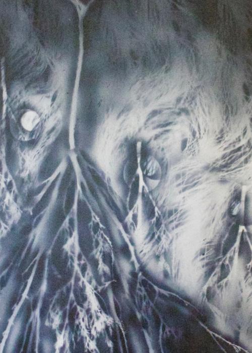Picture of Temps lunaire avec une odeur de cèdre blanc et de pin
