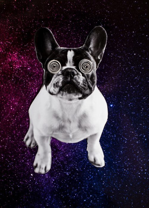 Picture of Louis in Space
