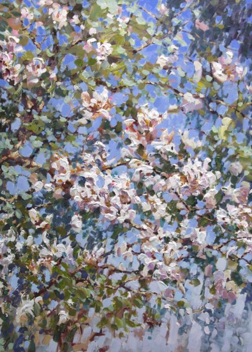 Picture of Magnolia