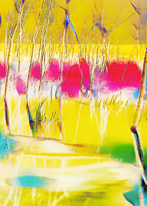 Picture of spring on the bruce - velvet abstract treatment