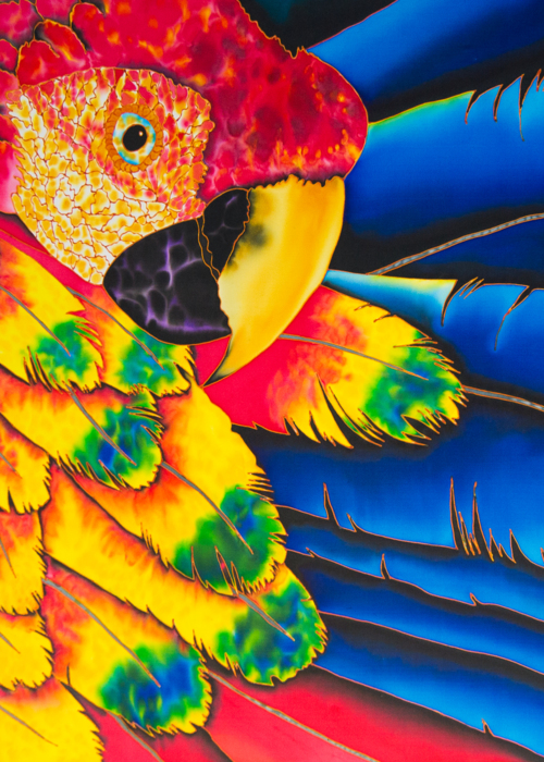 Picture of Scarlet Macaw