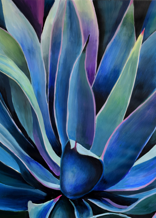 Picture of Blue Agave