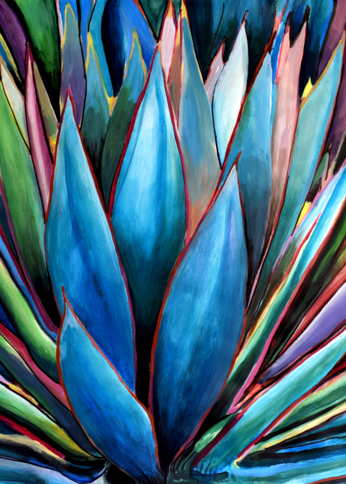 Picture of Agave Blue Glow