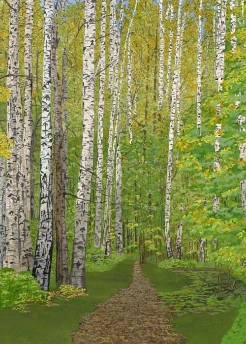Picture of BirchForest