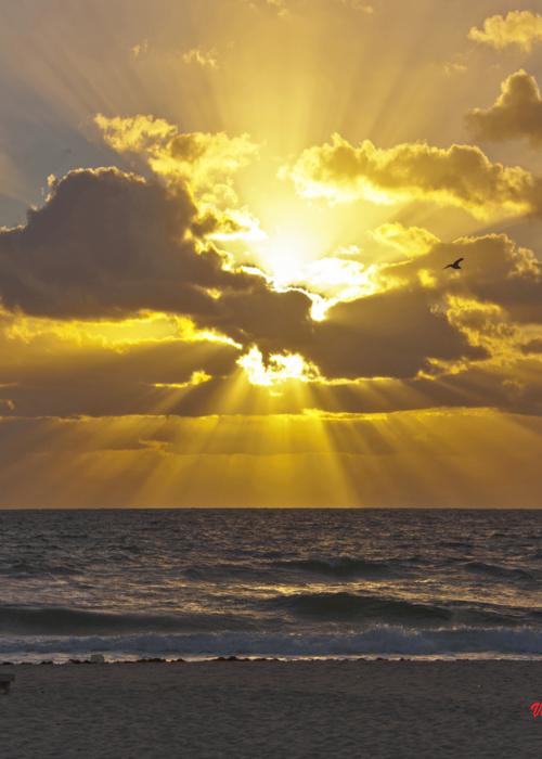 Picture of Atlantic Sunrise