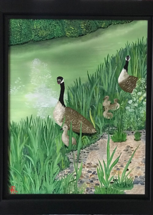 Picture of Canadian Geese