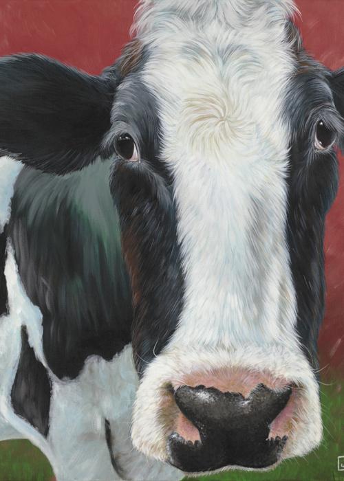 Picture of Moooooo Cow