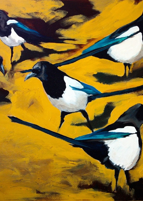 Picture of Magpie Mindfullness