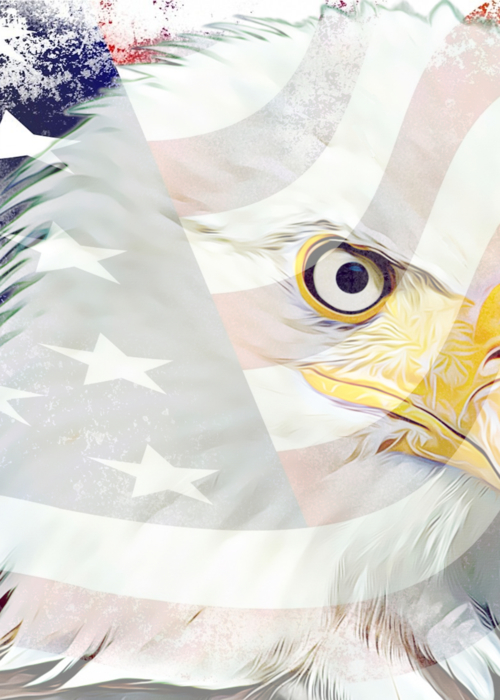 Picture of Bald Eagle Flag
