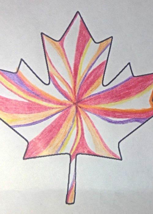 Picture of Canadian_Maple.