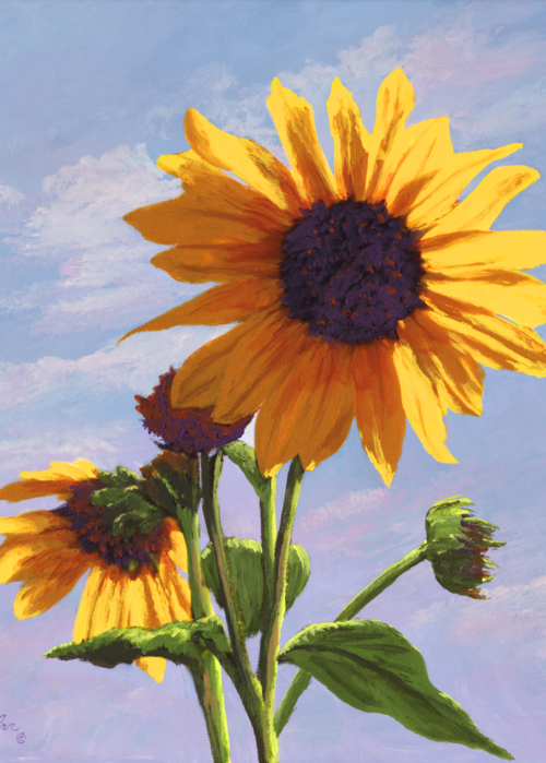 Picture of Sunflowers & Sunshine