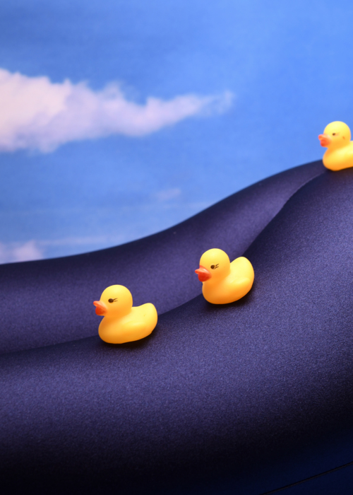 Picture of Rubber Duckies