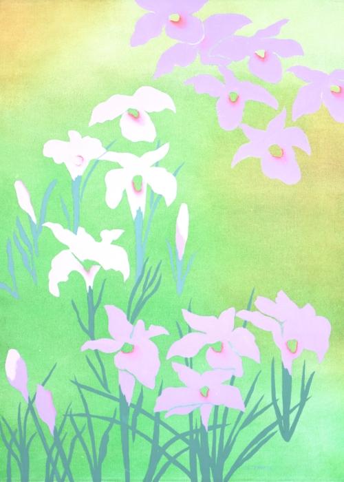 Picture of Irises