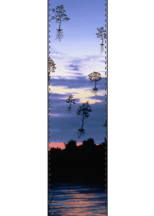 Picture of Leaving Dennis at Dusk Vivienne Scarf